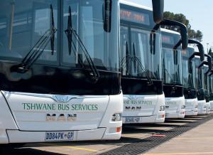 Excellent sales of MAN's Lion's City A84 bus